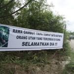 Ungkapan protes masyarakat di hutan gambut Rawa Tripa | Foto: M. Nizar Abdurrani