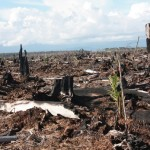 Hutan gambut Rawa Tripa yang hancur terbakar | Foto: Yusriadi Walhi Aceh