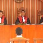 Majelis hakim di PN Langsa dengan terdakwa pelaku perdagangan ilegal satwa liar | Foto: Ist