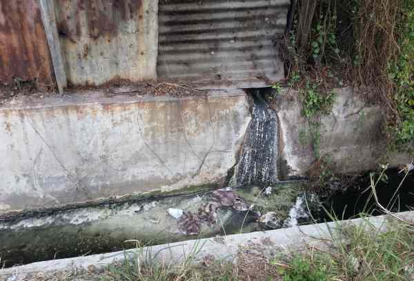 Limbah cair tahu yang merusak lingkungan | Foto: Ist
